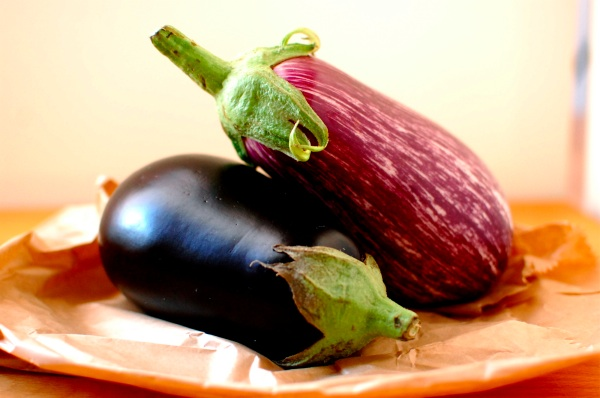 Eggplant melanzane